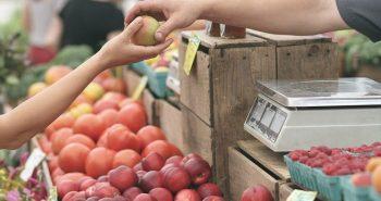 אוכל כדרך חיים - סיורי אוכל בשווקים